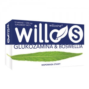 Willo S Glukozamina i Boswellia 10 tabletek